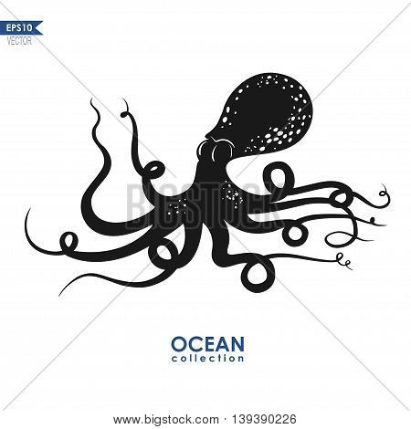 giant squid isolated on white, vector octopus silhouette