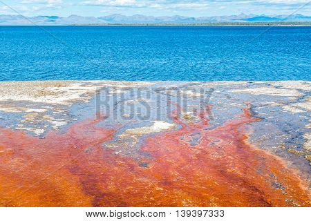 Bright red colours and blue Yellowstone Lake in West Thumb Geyser Basin in Yellowstone