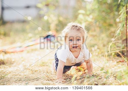 little girl crawling on the lawn at the farm