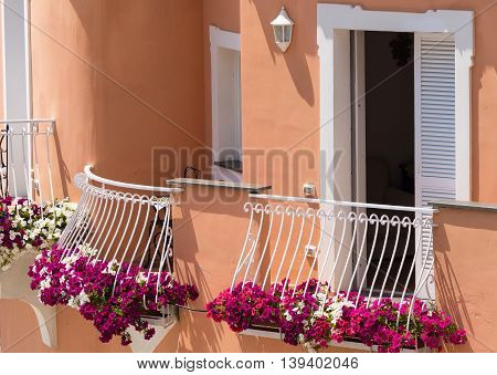 Brightly colorful and flowering plants on the balcony of villa in Positano Italy