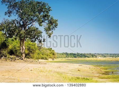 Safari route through Chobe National Park Botswana along the Chobe River