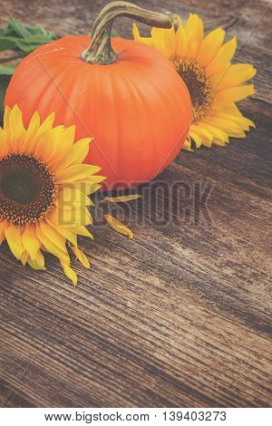 one orange pumpkin with sunflowers on wooden textured table , retro toned