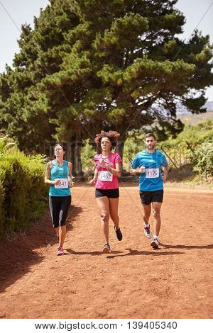 Three Runners In A Country Marathon