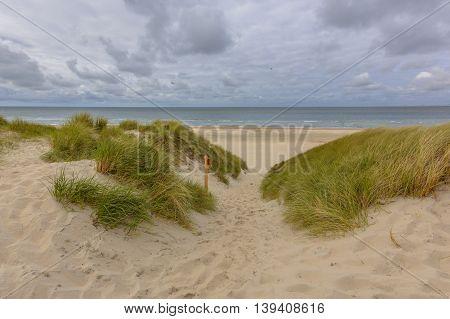 Beach Dune Sea Vista