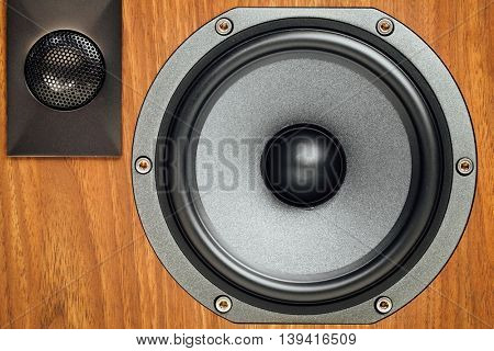 loudspeaker and tweeter in wooden cabinet