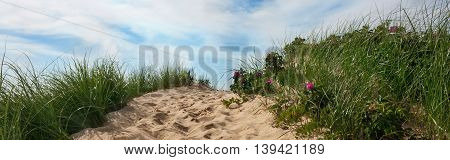 Path to beach over a dune with sky and clouds, Wellfleet Massachusetts on Cape Cod-Proportionate to Large Mobile Banner