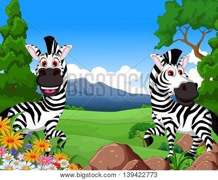 funny two zebra cartoon in the jungle