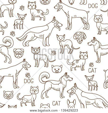 Vector pets pattern. Doodle dog and cat background