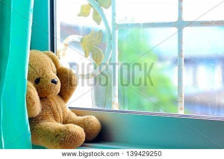 Loneliness lonely little bear sitting by the window.