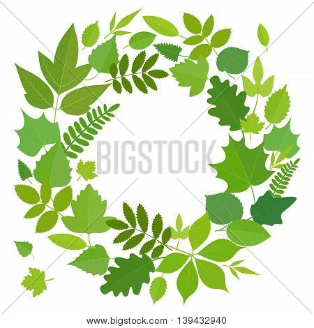 Wreath of green flora elements. Round frame with summer leaves circle shape template. Vector stock illustration.