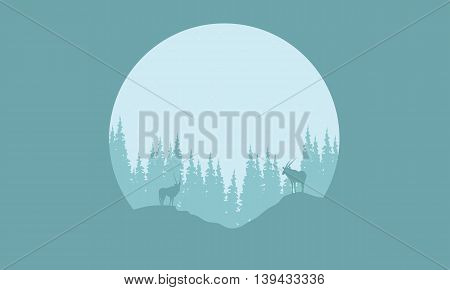 Silhouette of animal and spruce in the hills