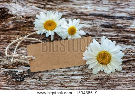 Daisy flowers with a vintage tag on wooden background