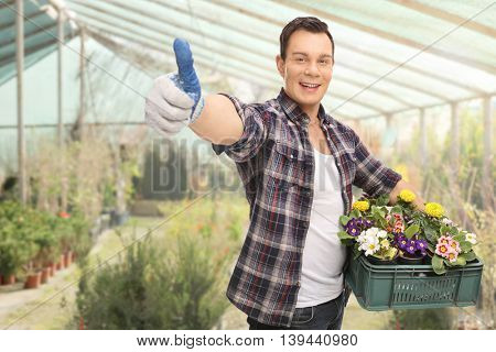 Young guy giving a thumb up and holding a rack of flowers in a greenhouse
