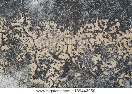 background textured surface cement have moss from rain water nature