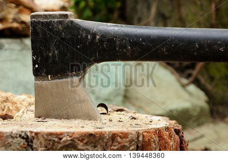 good axe which is deeply thrust in a stub