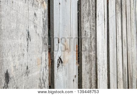Closeup surface wood pattern at the old and dried wood board wall texture background