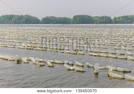 Shellfish Farm From Old Plastic Bottles In Sea At Chanthaburi, Thailand