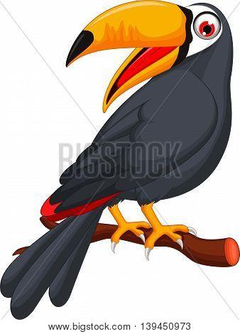 Cute cartoon toucan bird posing on the branch