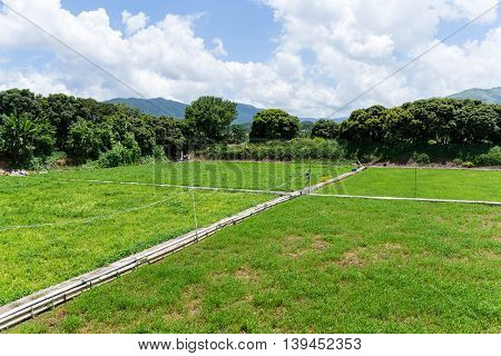 Countryside at summer time