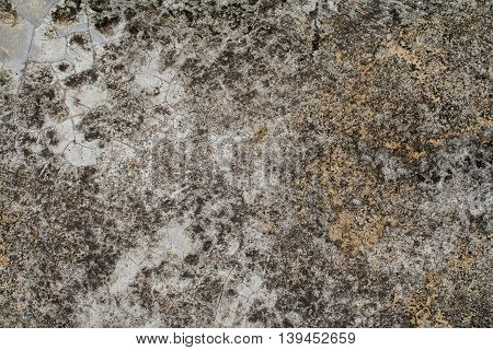 background textured surface cement have moss nature from rain water