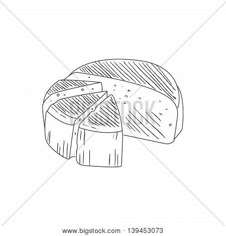 Round Cheese Cut In Segments Hand Drawn Realistic Detailed Sketch In Classy Simple Pencil Style On White Background