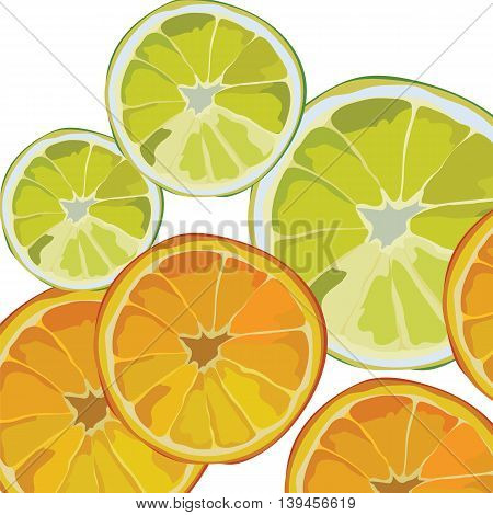 Orange and Lime fresh slices Vector background. Vector summer fruits slices background