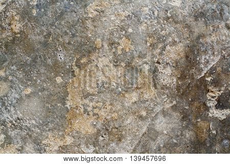 background textured surface cement on the floor