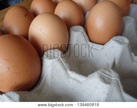Paper Plate Full Of Fresh Eggs