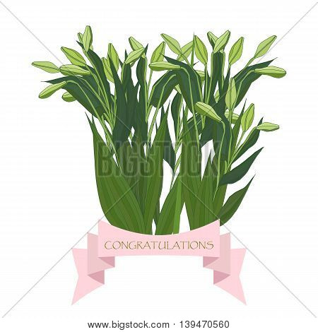 Bouquet of light green lilies with unopened buds and a ribbon with text