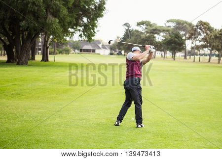 Rear view of golfer raising his golf club before his shot