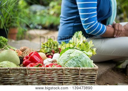 Midsection of woman with fresh organic vegetables at community garden