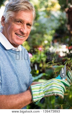 Portrait of happy mature male worker pruning twigs at garden