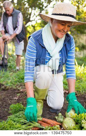 Happy mature female gardener with colleague working at garden