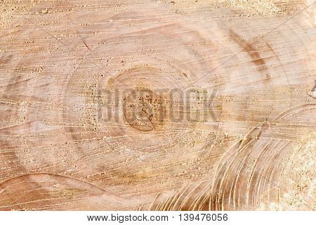 Old alder wooden round timber background. Rough cutting roundwood