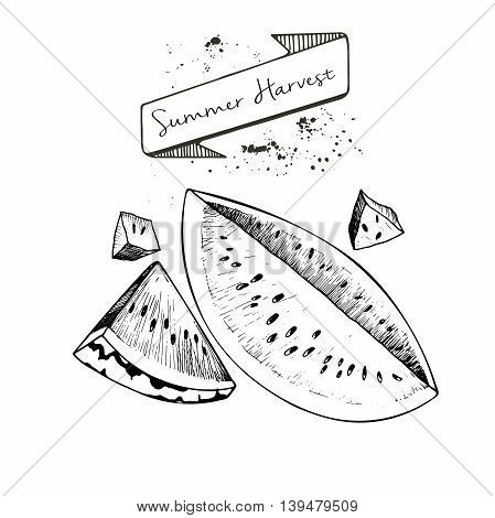 Vector set of summer harvest. Decorated with banner and blots. Fresh detox fruit collection. Watwrmelon slices.