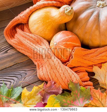 halloween pumpkins shrouded in cozy orange sweater fallen leaves on wooden table. top view copy space