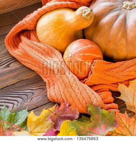 halloween pumpkins shrouded in cozy orange sweater fallen leaves on wooden table. top view copy space
