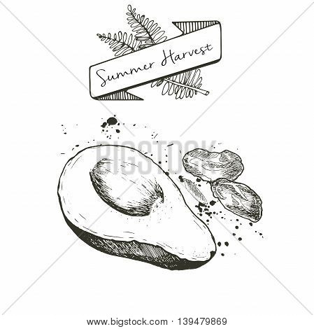 Vector set of summer harvest. Decorated with banner fern leaves and blots. Fresh detox fruit collection. Avocado and dates.