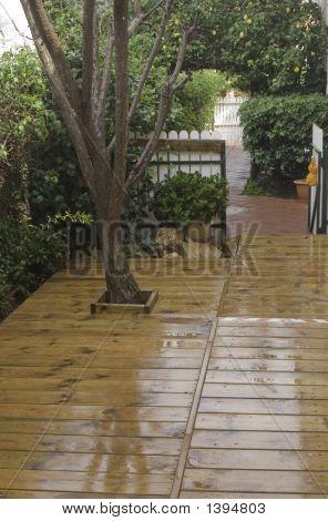 The Wet Deck