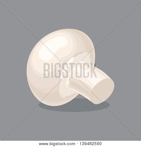 Colorful vector illustration of agaricus mushroom in flat style