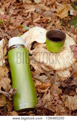 Green Thermos With Coffee In Autumn Fallen Leaves