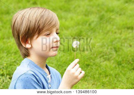 cute blond boy sitting on green grass and blows away dandelion