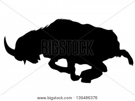 Wild goat with horns on a white background
