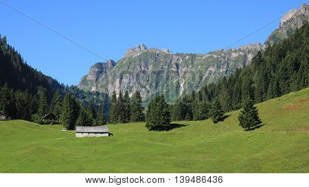 Rural landscape in Glarus Canton Swiss Alps. Green meadow forest and mountains in the Oberseetal.