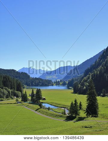 Landscape in Glarus Canton. Green meadow forest snd lake Obersee. Morning scene.