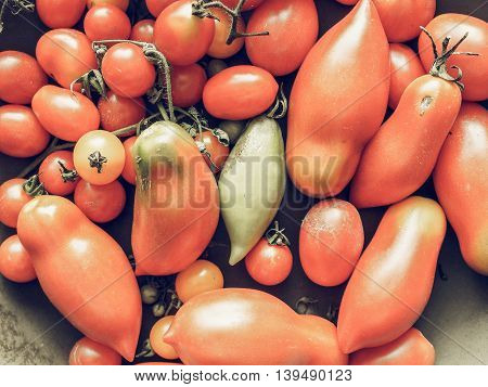 Tomato Vegetable Vintage Desaturated