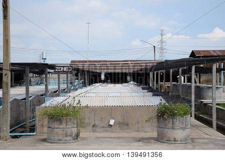 The Shrimp concrete farming. A fish hatchery in Thailand. breeding aquatic animals.