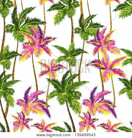 seamless vector palm pattern with layered colorful neon palm leaves and beautiful silhouettes, for swimwear, wall paper.