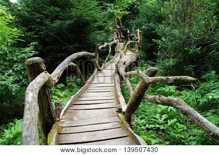 Spooky footbridge in to a forest - boardwalk