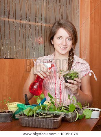 Woman Watering  Various Sprouts